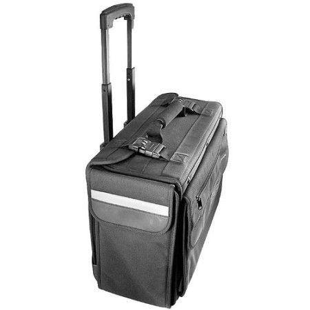 Carrying case with wheels